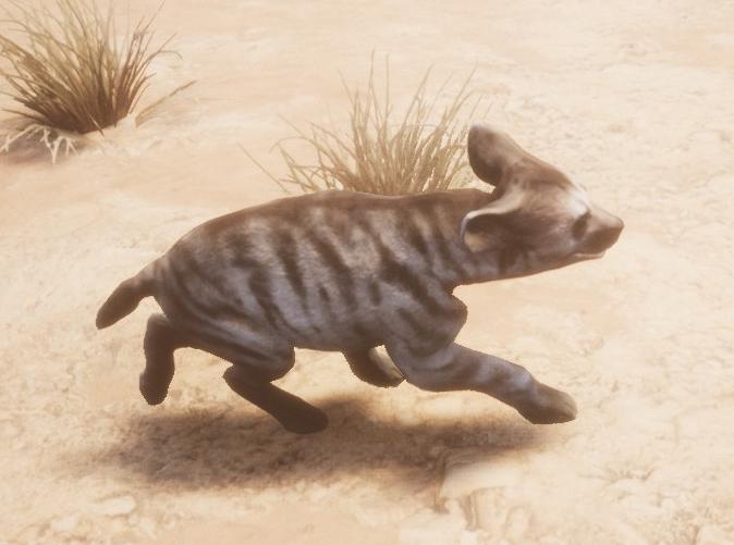 Hyena_cub_side.jpg